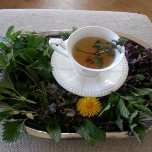Liaudies medicina